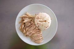 feg hainanese rice Arkivbild