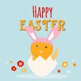 Feg kanin i ägghälsningkort Lycklig påsktecknad filmdesign med den gulliga fågelungen och blommor Royaltyfri Bild