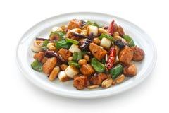 feg kinesisk matkungpao Fotografering för Bildbyråer