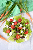 feg leversallad körsbärsröda tomater och fetaost Royaltyfria Foton