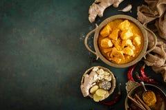 Feg masalacurry, kryddigt kött Gul feg currysås Kryddig feg currymaträtt Traditionell indisk mat, asiatisk kokkonst royaltyfri fotografi