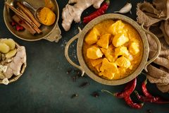 Feg masalacurry, kryddigt kött Gul feg currysås Kryddig feg currymaträtt Traditionell indisk mat, asiatisk kokkonst arkivfoto