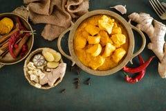 Feg masalacurry, kryddigt kött Gul feg currysås Kryddig feg currymaträtt Traditionell indisk mat, asiatisk kokkonst arkivbilder