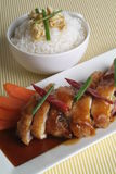 feg rice Arkivbild