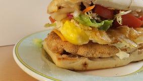 feg smörgås Royaltyfri Fotografi