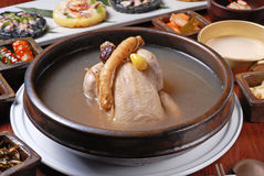 Feg soppa för ginseng Arkivbilder