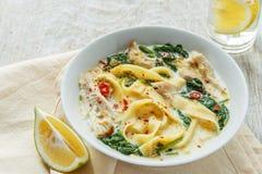 Feg soppa för kokosnötcurry med nudlar i en platta Fotografering för Bildbyråer