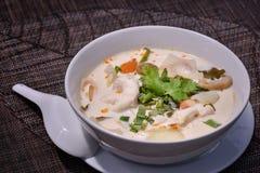 Feg soppa i kokosnöt mjölkar Fotografering för Bildbyråer