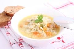 Feg soppa med ris Arkivbild