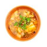 feg soup Royaltyfria Foton