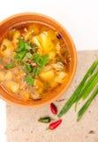 feg soup Royaltyfri Fotografi