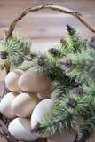 Fega ägg i en korg på en träbakgrund Arkivfoton