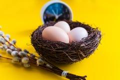 Fega ägg i ett rede med en pil fattar och en ringklocka på en gul bakgrund royaltyfri fotografi