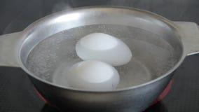 Fega ägg lagas mat i kokande vatten arkivfilmer