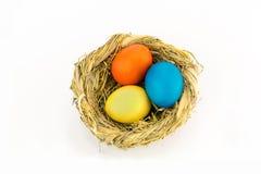 Fega ägg målade i ljus målarfärg i ett rede som vävdes av örter royaltyfri fotografi