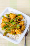 Fega Jalfrezi - indier eller pakistansk curry Fotografering för Bildbyråer