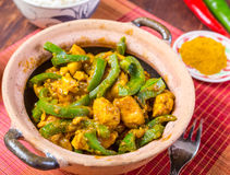 Fega Jalfrezi - indier eller pakistansk curry Arkivbild