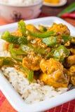 Fega Jalfrezi - indier eller pakistansk curry Arkivbilder