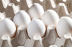 Fega vita ägg i en kassett Royaltyfri Bild