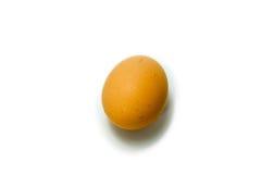 Fegt ägg för singel Royaltyfri Foto
