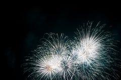 Feier-Feuerwerke lizenzfreie stockbilder