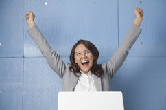 Feiern des Erfolgs Lizenzfreie Stockfotos