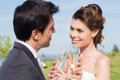 Feiern des verheirateten Paars Lizenzfreie Stockfotos