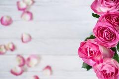 Feierrahmen mit rosa Rosen auf weißen Planken Stockfoto