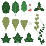 Feiertag Blätter und Sprigs Lizenzfreie Stockfotos