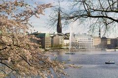Feiertag KirschblÃ-¼ zehn Alster Hamburg lizenzfreie stockfotos