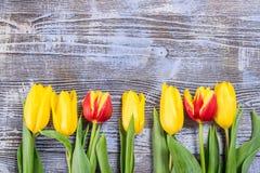 Feiertag Tulip Flowers auf hölzernem Hintergrund Stockbilder