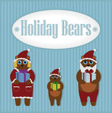 Feiertags-Bären Winter set Lizenzfreie Stockbilder