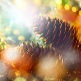 Feiertags-Hintergrund mit Kegeln und Lichtern Stockfotos