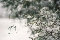 Feiertags-Winter-Schnee-Szene lizenzfreies stockfoto