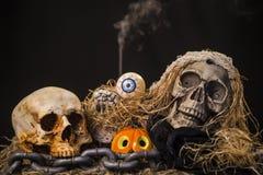 Feiertagsdekor Halloween-Schädel und -kürbise, Lizenzfreie Stockbilder