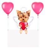 Feiertagsfahnen mit Ballonen und Hund Stockbild