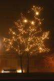 Feiertagsleuchten im Nebel Stockfotografie