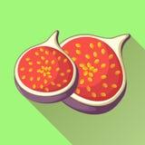 Feigenfruchtikone mit langem Schatten Stockfotos