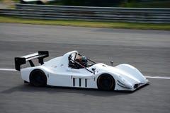 Feigenwinter ` s白色基础SR3 RX 免版税库存照片
