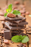 Feijão de cacau em uma barra de chocolate escura quebrada Imagem de Stock