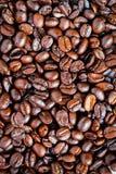 Feijão de café imagens de stock royalty free