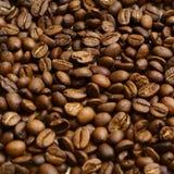 Feijão de café. Imagem de Stock Royalty Free