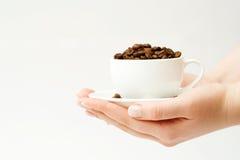 Feijão de café. Imagem de Stock
