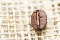 Feijão de café Fotografia de Stock