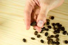Feijão de café disponivel Foto de Stock Royalty Free