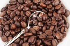 feijão de café e colher roasted do chá Fotografia de Stock Royalty Free