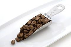 Feijão de café em uma colher Fotografia de Stock Royalty Free