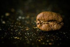 Feijão de café extremamente próximo Fotos de Stock Royalty Free