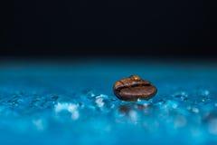 Feijão de café molhado fotos de stock