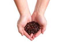 Feijão de café na mão fotografia de stock royalty free
